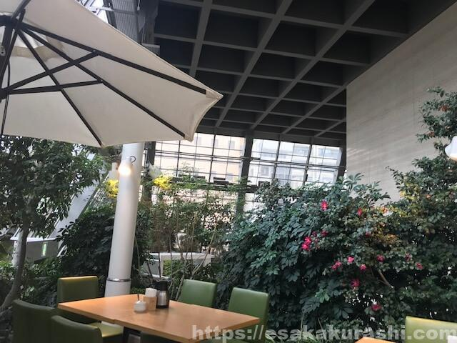 萠茶の店内は植物園のよう