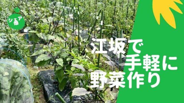 シェア畑江坂